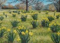 adelaide-hills-spring-gallery