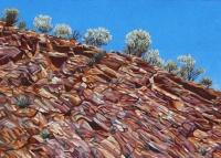arkaroola-hillside-gallery