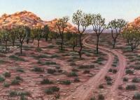 desert-track-gallery