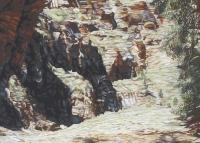 flinders-ranges-dry-creek-gallery